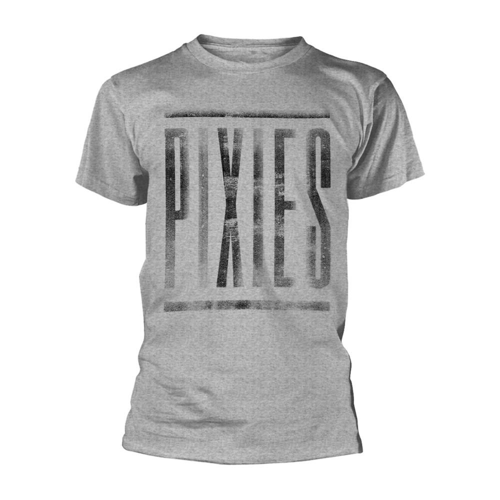 The Pixies - Giant Logo (Grey)