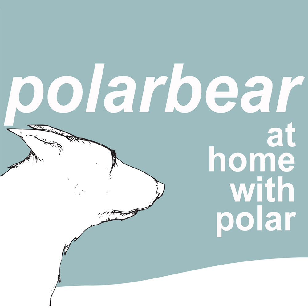 Polarbear - At Home With Polar (MP3 Download)