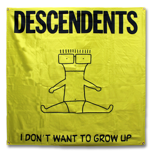 Descendents - I Don't Want To Grow Up  (USA Import Flag)