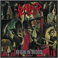 Slayer : Patch